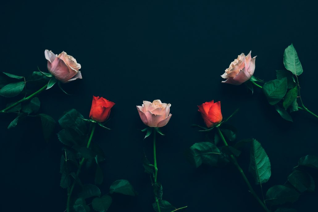 Xarop de roses
